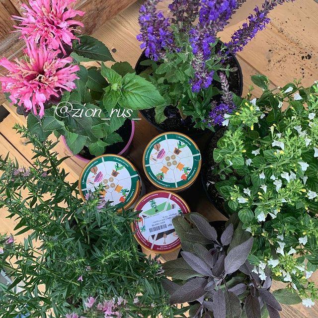 удобрения для растений zion
